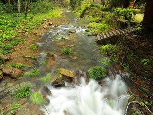 饱览盛景 青山绿水环绕张家界