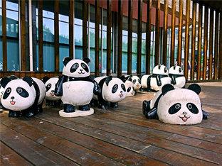 载着妹子去看熊猫儿