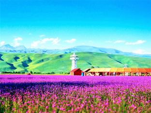 北疆大环线 脚步到达所梦之处