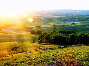 畅游乌兰布统大草原