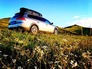 驰骋在若尔盖大草原