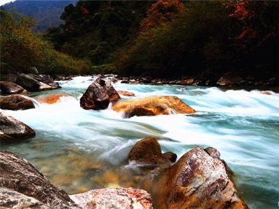 魅力秋景 川西环线游有惊无险