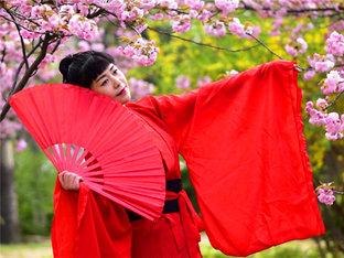 又是樱花季 一袭素裙几张笑靥