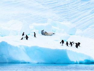 南极--追寻诗与远方