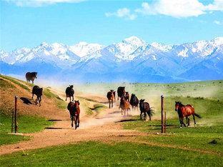 诗与远方 新疆三万里自驾之旅