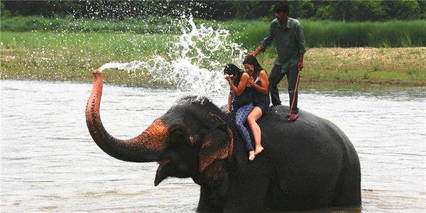 了却心愿 眼中的佛国--尼泊尔
