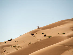 看中国最美沙漠 玩好巴丹吉林