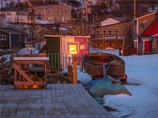 渔村抗疫开始 连载记录加拿大抗疫情况