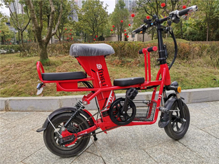 大车套小车照顾一家人 购进三人电单车