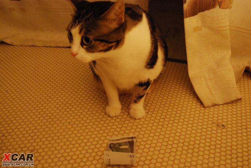 额!一股铜臭味! -标题 谁丢的钱图片