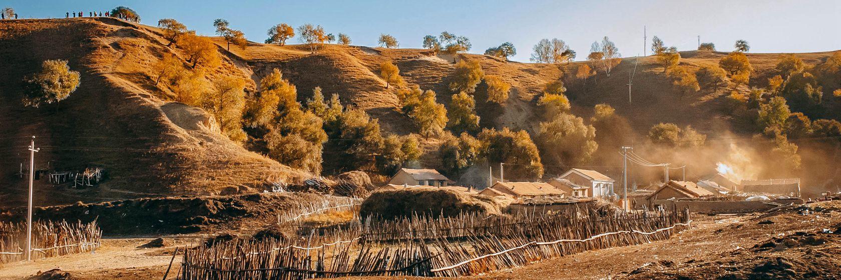 金色的秋天 自驾塞罕坝,大草原寻秋之旅