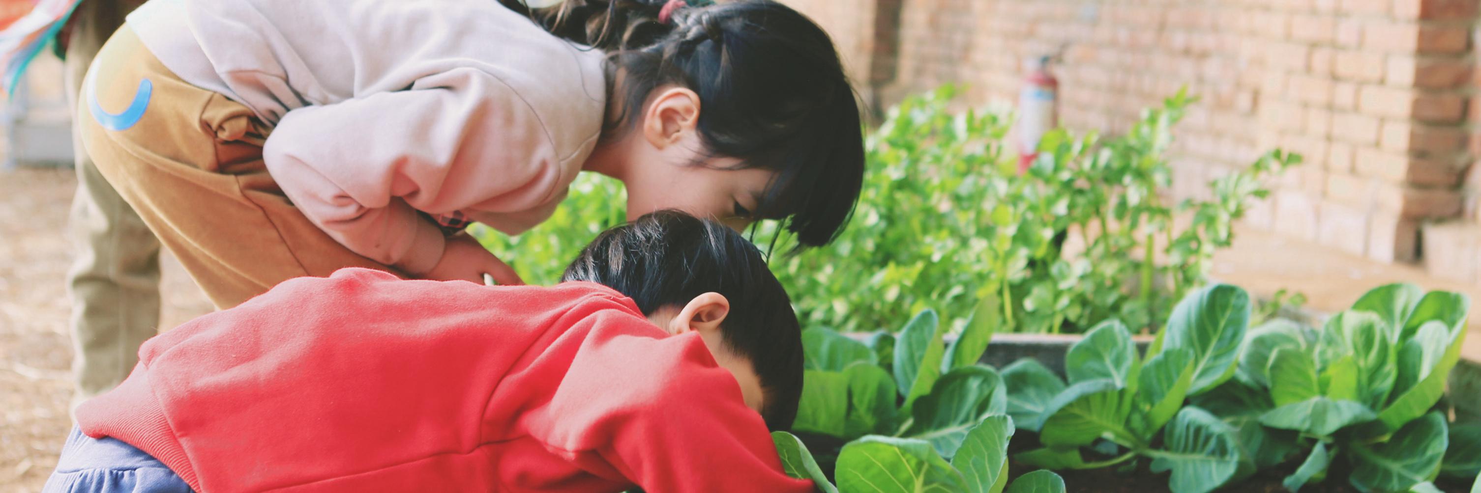 【北京周边游】天开农社,田园生活,诗和远方,这里都有