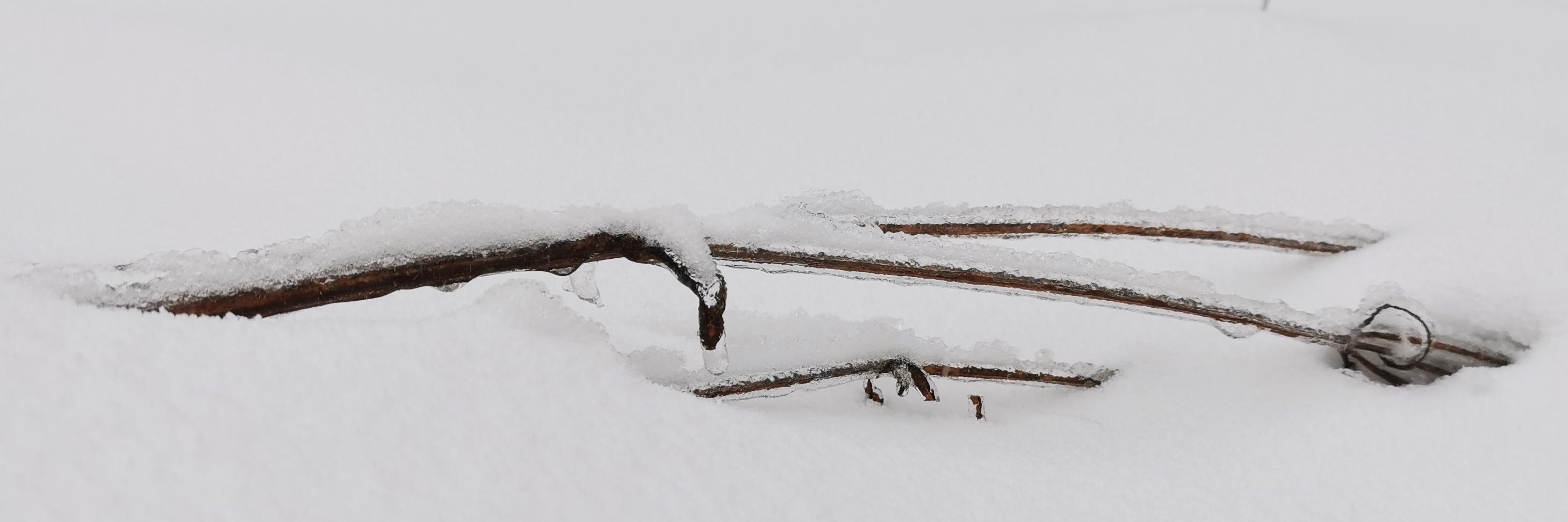 陕西终南山看春雪