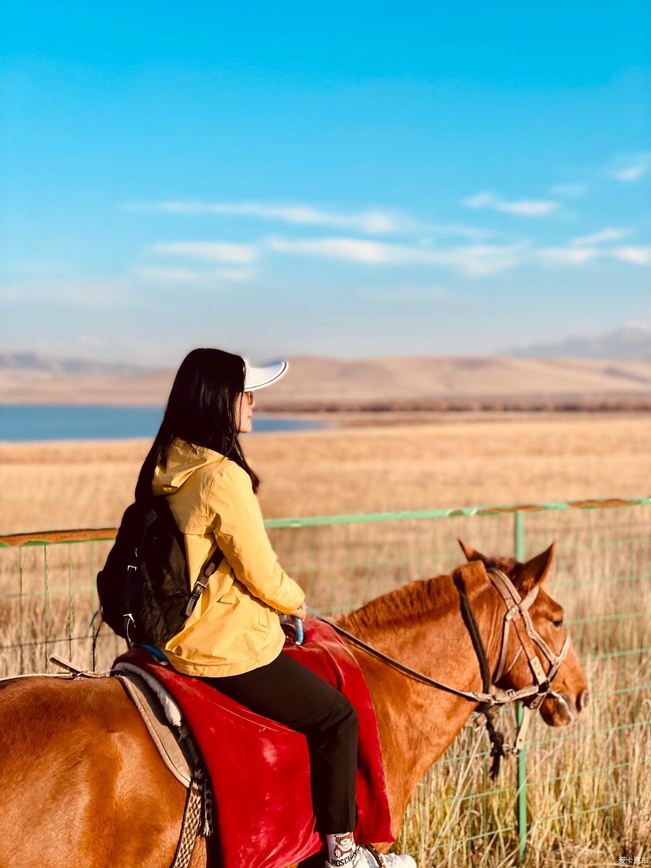 甘肃、内蒙、青海环线自驾游——感受沙漠越野、寻胡杨林美境